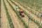 Kubota M5 Series Orchard